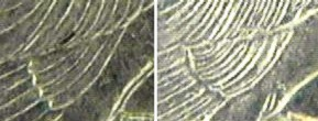 The difference in wing feathers between 1982 and 1989 25 Cents of the Seychelles